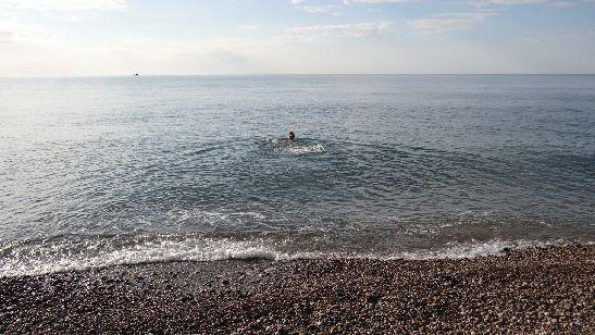 Иногда в начале ноября ещё можно совершить несколько заплывов