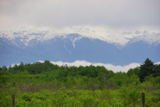 Природные виды Абхазии в апреле особенно живописны